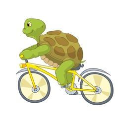 Funny turtle biker vector