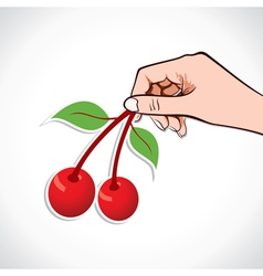 Cherry in hand vector