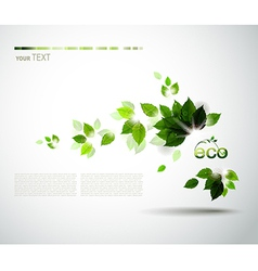 Eco brochure vector