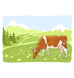 The white and red cow is grazed on the alpine mead vector