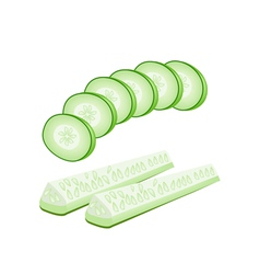 Delicious fresh cucumber slices on white vector
