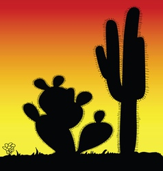 Cactus prickly black silhouette vector