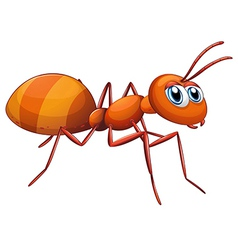 A big ant vector