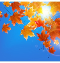 Delicate autumn sun with glare on blue sky vector