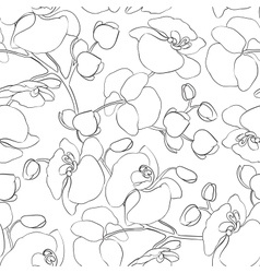 Orchid pattern vector