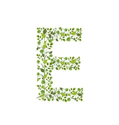 Spring green leaves eco letter e vector