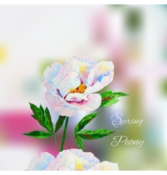 Background with pink white peony2-02 vector