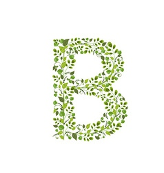 Spring green leaves eco letter b vector