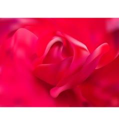 Rose close up vector