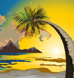 Palm trees on the beach at dusk vector