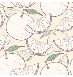 Grapefruit stylized seamless pattern vector