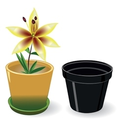 Growing flower in a pot and black empty pot vector