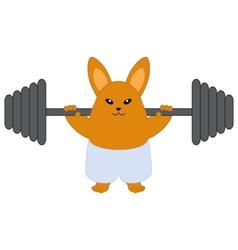 Strong bunny vector