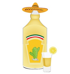 Tequila bottle and shot vector