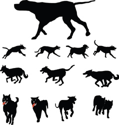 Dogs various vector