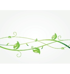 Green leaves and butterflies ecological vector
