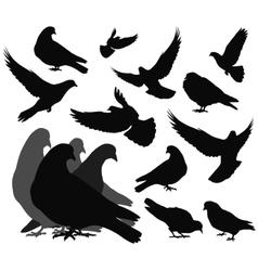 Doves vector
