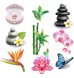 Set of spa symbols vector