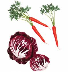 Mix vegies vector