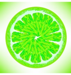 Green lime vector