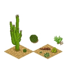 Pixel art cactus tilesets and plants game vector