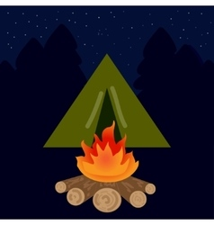 The camp campfire at night vector