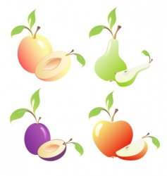 Fruits images vector