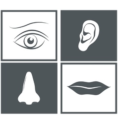 Nose eye mouth and ear pictograms vector