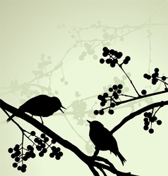 Birds on the branch during the summer day vector