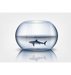 Aquarium with shark vector