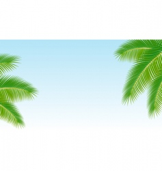Palm branches against the blu vector