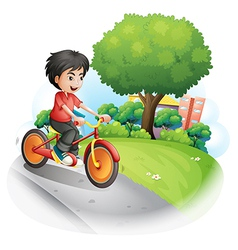 A boy with a red shirt biking vector