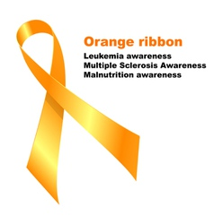 Orange ribbon vector