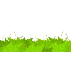 Grape leafs background vector