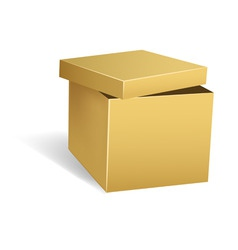Cardboard box with opened lid vector