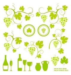 Grape vines design elements set vector