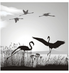 Flamingo silhouettes vector