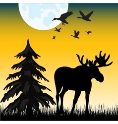 Moose on glade vector