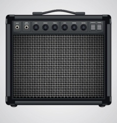 Guitar combo vector