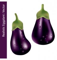 Realistic eggplant vector