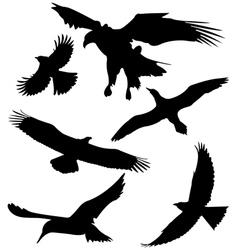 Six bird fly vector