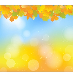 Autumn blue top vector