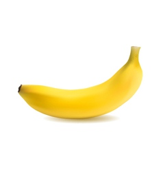 Banana object vector