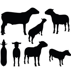 Sheep silhouette with standing still pose vector
