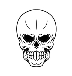 Danger cartoon skull vector