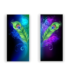 Two banners with peacock feathers vector
