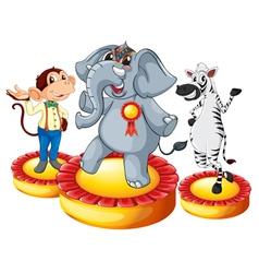 Animal circus vector