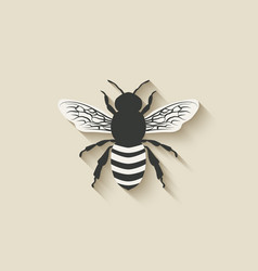 Bee insect icons vector