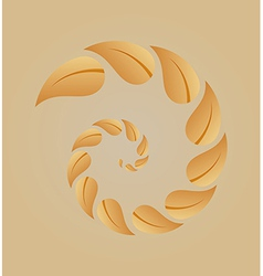 Spiral of yellow leaves vector