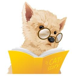 Dog read vector